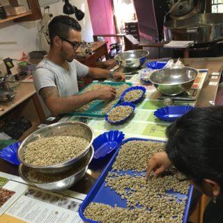Peru's Coffee Culture