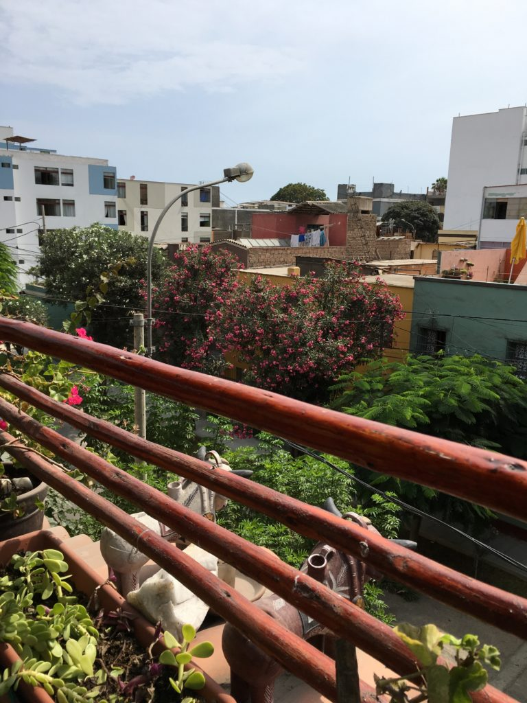 View from the rooftop of Casa Nuestra